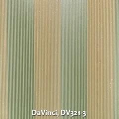 DaVinci-DV321-3
