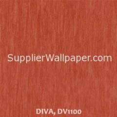 DIVA, DV1100
