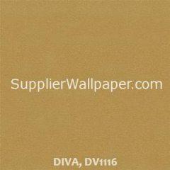 DIVA, DV1116