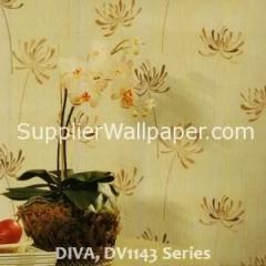 DIVA, DV1143 Series