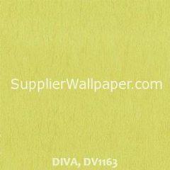 DIVA, DV1163