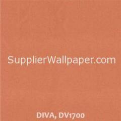 DIVA DV1700