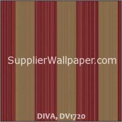 DIVA DV1720