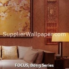FOCUS, B0113 Series