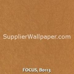 FOCUS, B0113