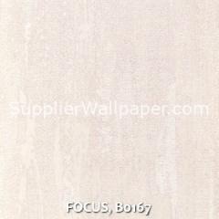 FOCUS, B0167