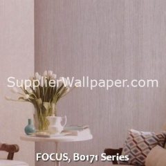 FOCUS, B0171 Series