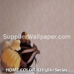 HOME COLOR, CH-5861 Series