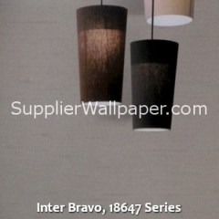 Inter Bravo, 18647 Series