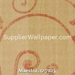 Maestro-12-7823