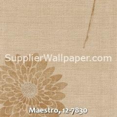 Maestro-12-7830