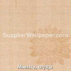 Maestro-12-7832