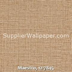 Maestro-12-7845