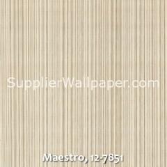 Maestro-12-7851