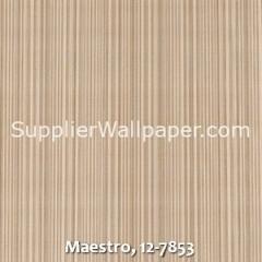 Maestro-12-7853
