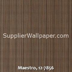 Maestro-12-7856
