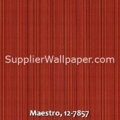 Maestro-12-7857