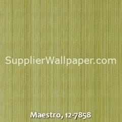 Maestro-12-7858