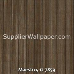 Maestro-12-7859
