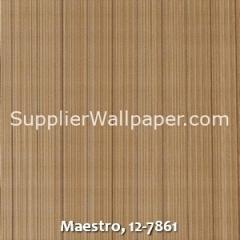 Maestro-12-7861