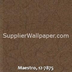 Maestro-12-7875