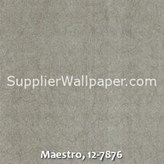 Maestro-12-7876