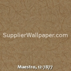 Maestro-12-7877