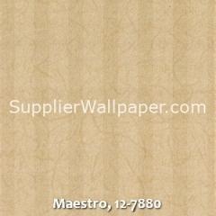 Maestro-12-7880