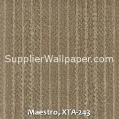 Maestro-XTA-243