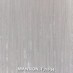 MANSION-F71034