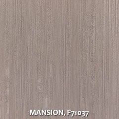 MANSION-F71037