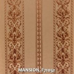 MANSION-F71052
