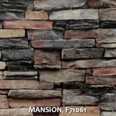 MANSION-F71061