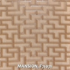 MANSION-F71071