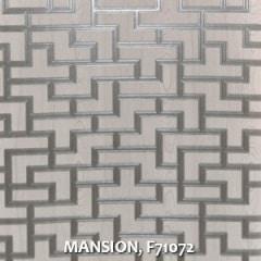 MANSION-F71072