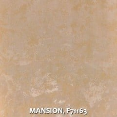 MANSION-F71163