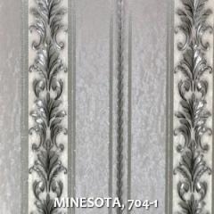 MINESOTA, 704-1