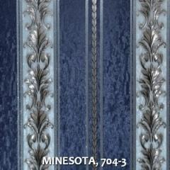 MINESOTA, 704-3