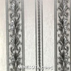 MINESOTA, 704-5
