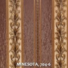 MINESOTA, 704-6