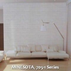 MINESOTA-705-1-Series