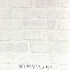 MINESOTA, 705-1