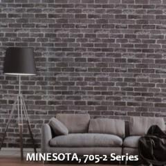 MINESOTA-705-2-Series