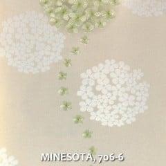 MINESOTA-706-6