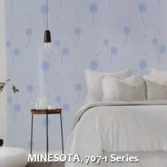 MINESOTA-707-1-Series