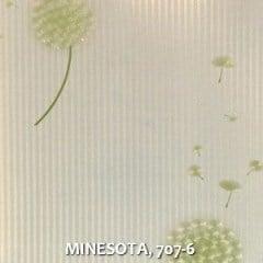 MINESOTA-707-6