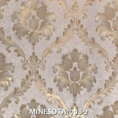 MINESOTA-708-2