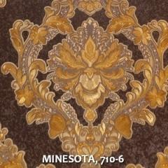 MINESOTA-710-6