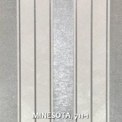 MINESOTA-711-1