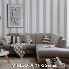 MINESOTA-711-2-Series